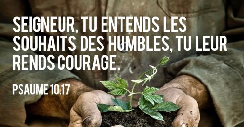 «Seigneur, tu entends les souhaits des humbles, tu leur rends courage», une chronique de Serge Carrel pour Radio R
